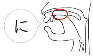 にの発音,舌の動き