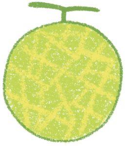 メロン,melon